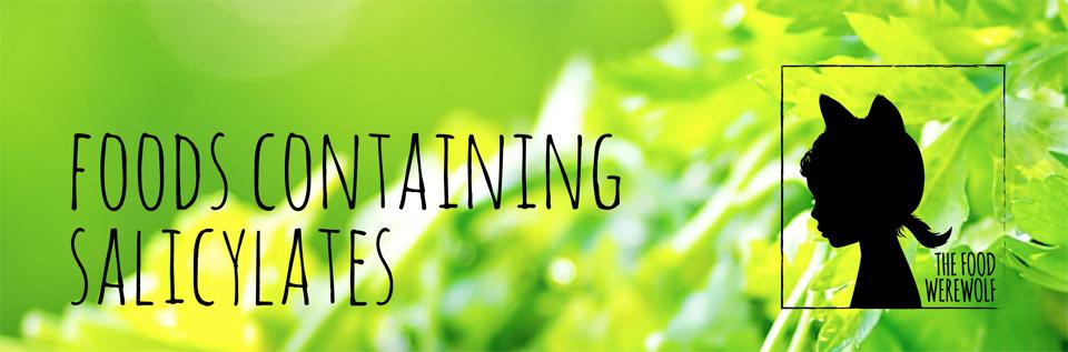 foods-containing-salicylates
