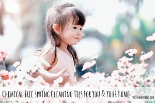 springcleaning2