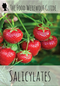 Salicylates mini eBook Cover Pg