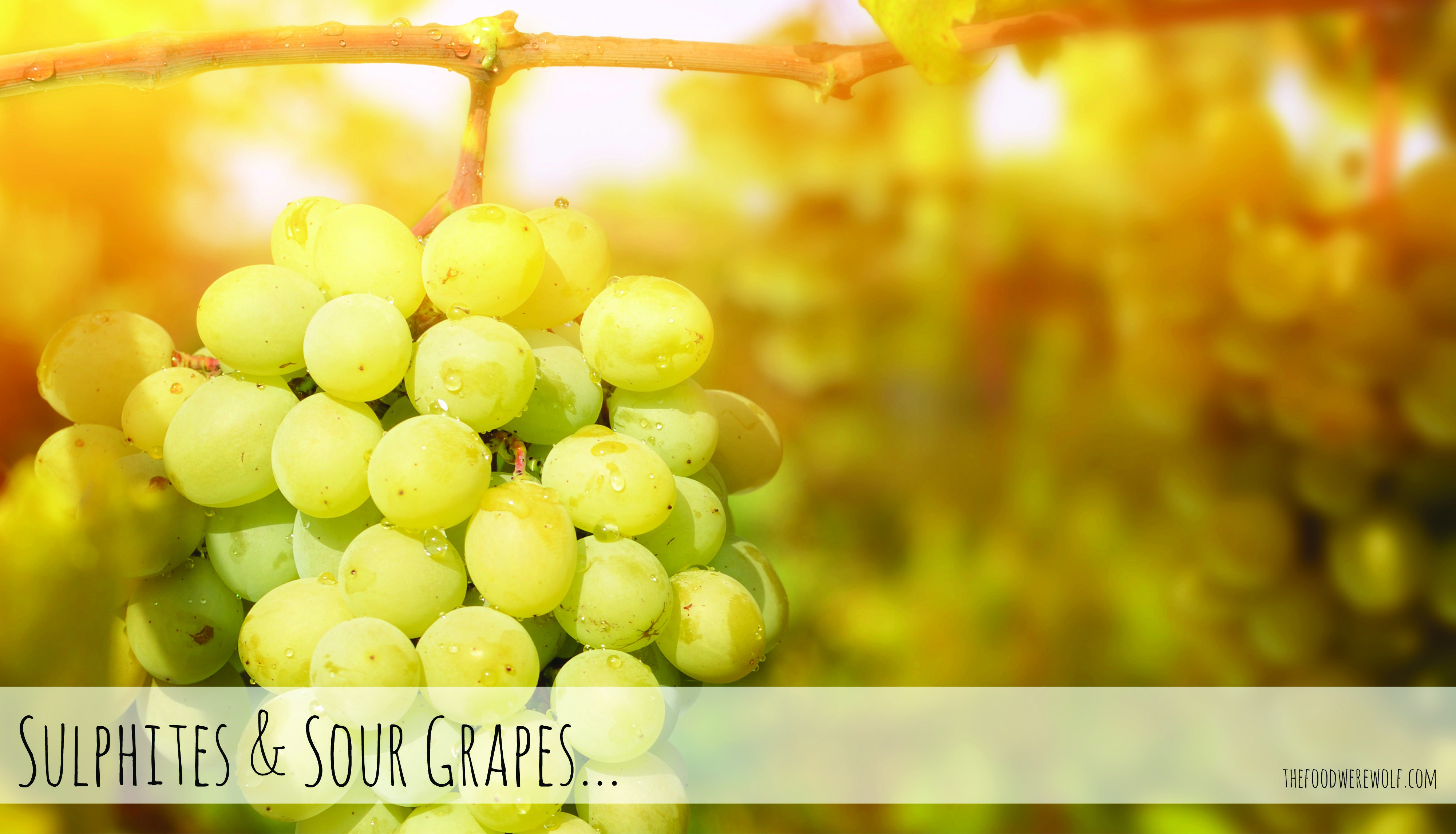 Sulphites Sour Grapes Blog Image